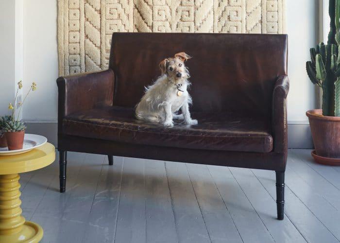 Old Leather Freud Sofa 36BS-0003