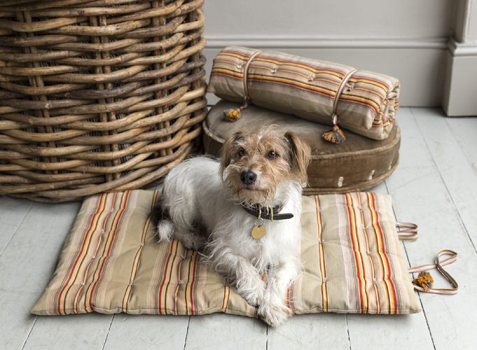 Slimline Dog Bed