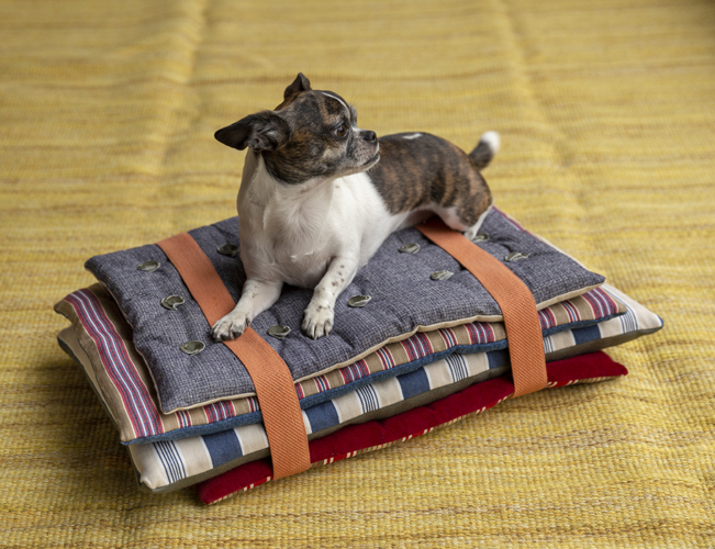 PRINCESS & THE PEA DOG BED