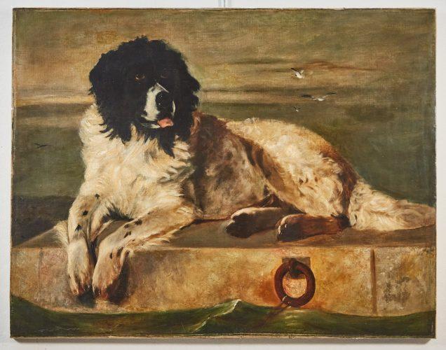 HL4547 – Portrait of a Dog -0002