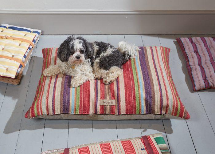 HB900328 – Juno Tarp Dog Bed 1-0004