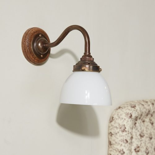 Swan Neck Sconce with Glass Shade-0001
