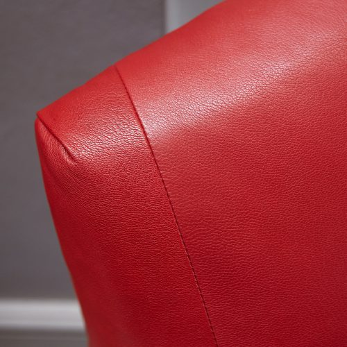 HB900349 – Retriever in Red Leather-0008