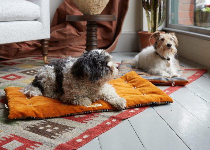 HB900368 – Travelling Dog Bed-0006