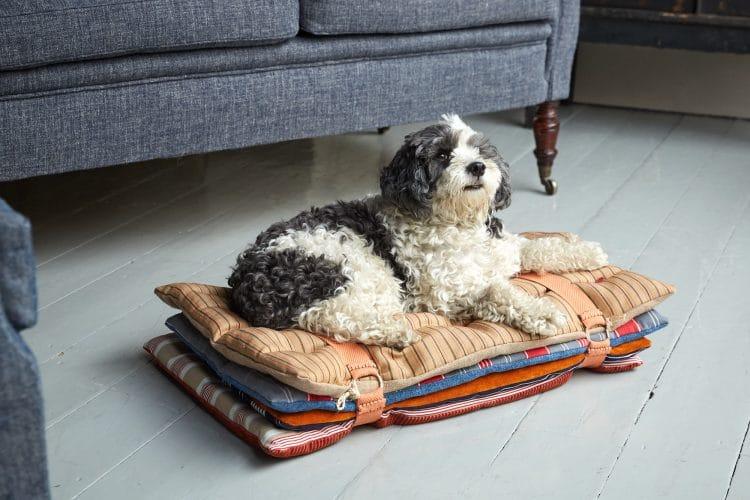 HB900391 – Princess and Pea Dog Bed-0012